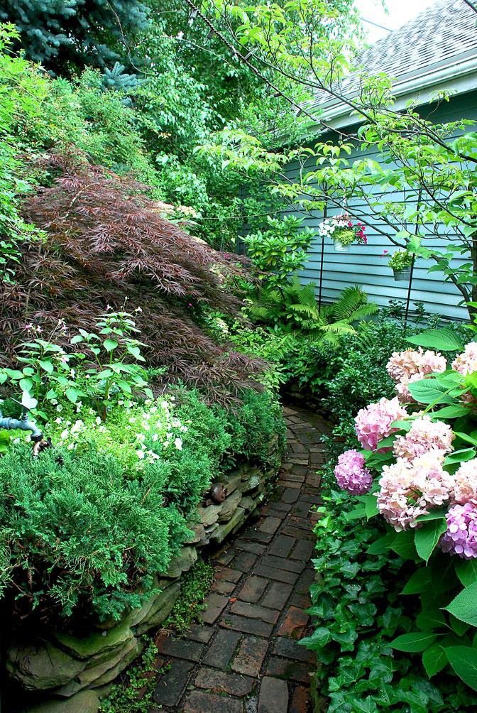 Garden Walk Buffalo Cottage District 5: 1000+ Images About Buffalo Garden Walk On Pinterest